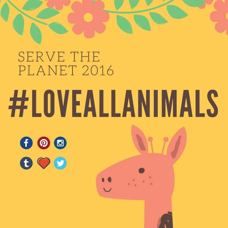 Serve the Planet 2016 - 06
