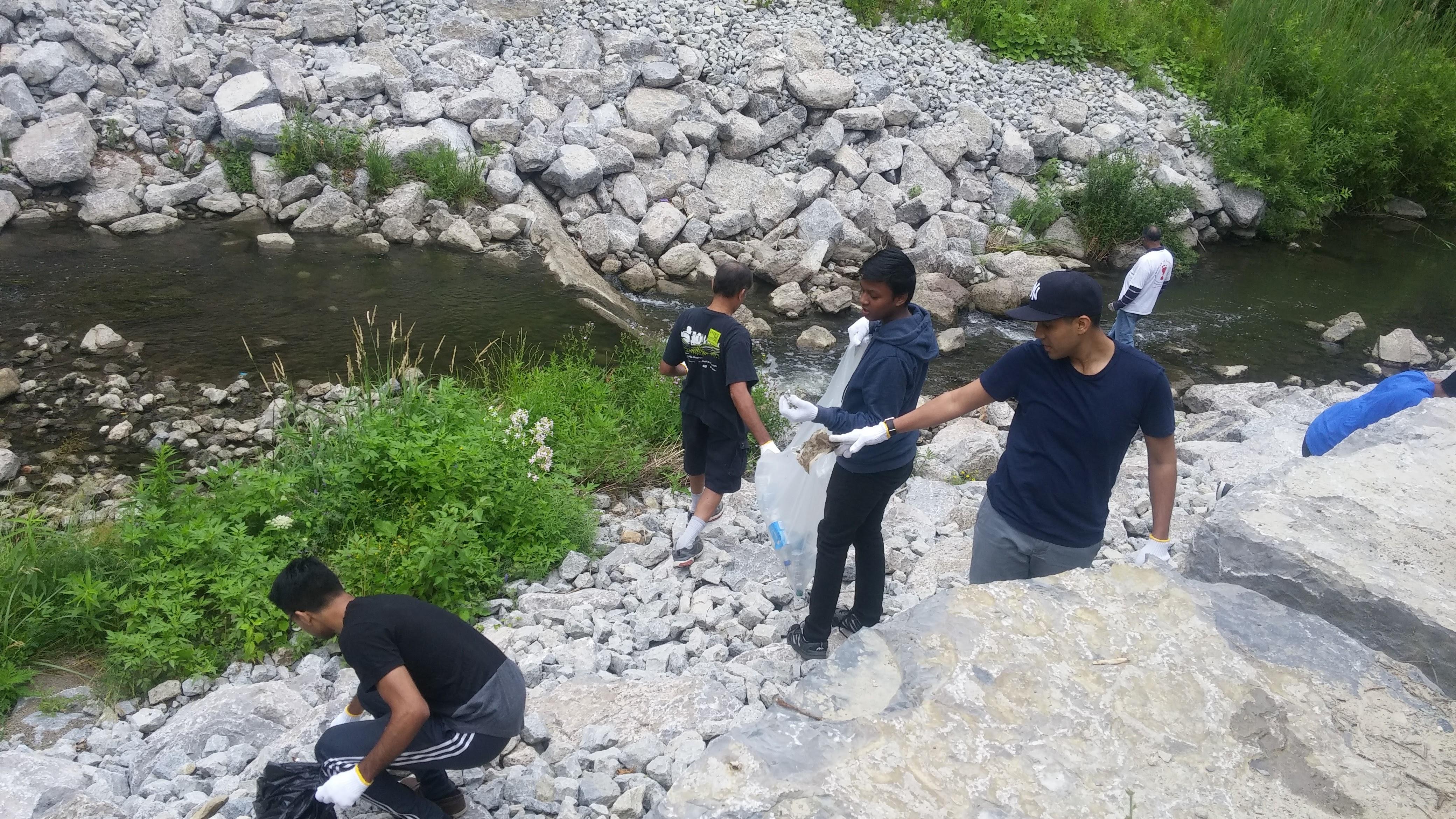 Shoreline Cleanup - 01