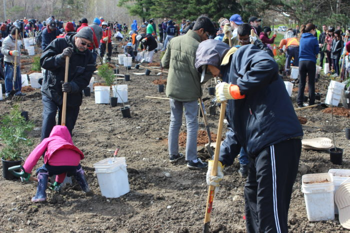 Earth Day Tree Planting - 01